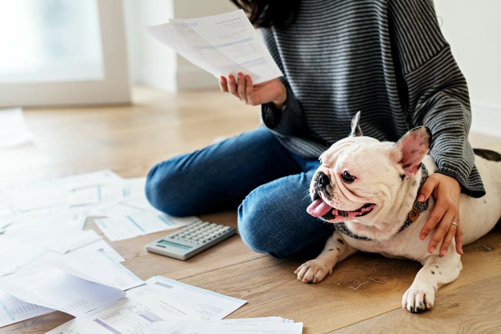 Some Legitimate Dog Tax Deductions You Can Actually Take!